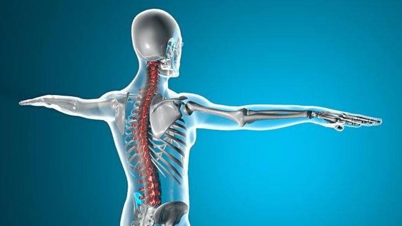 Sciatica, Bladder and Prostate Issues (Lumbar 4)